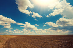 Arable field in a sunny day. Arable field with cloudy sky and sun Stock Images