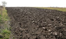 Arable field of chernozem. Arable field with Ukrainian chernozem. Furrows are visible Royalty Free Stock Photography