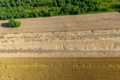 Arable fields, grain destroyed during a storm. Below you can see the destroyed fields during a storm Stock Images