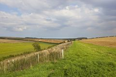 Arable fields and plantation Royalty Free Stock Photos