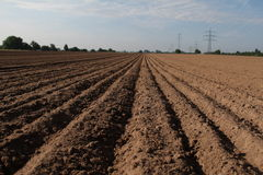 Arable. Furrow / Arable / Freshly plowed field Royalty Free Stock Photos