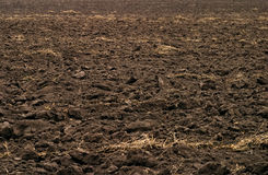 Arable land. Close-up photography of ploughed field texture Stock Image
