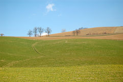 Arable Land. Late winter or early spring Stock Photography