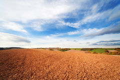 Arable land. In spring time and blue sky Stock Image