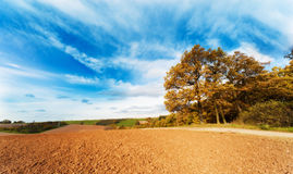 Arable land. In spring time and blue sky Royalty Free Stock Image
