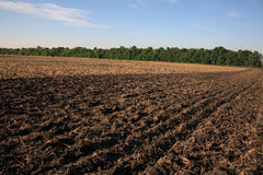 Arable land. Direct road among the cleaned fields Royalty Free Stock Images