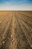 Arable land. Arable agricultural land under the blue sky Stock Photo