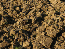 Arable land background. Fragment of rustic arable land surface Stock Photography