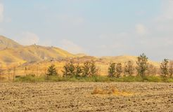 Arable land on a field. In the foothills of the mountains of Galilee in Israel stock photo