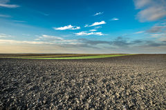 Arable land field. Arable landl field and sunset Royalty Free Stock Photography
