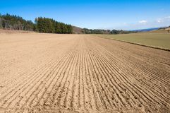 Arable land and forest. Landscape with arable land, forest and hill Stock Photo
