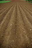 Arable Land. The furrows in the field of arable land ready for spring planting Royalty Free Stock Photo