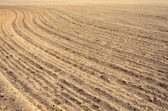 Arable land at harvest time in farmland Stock Image