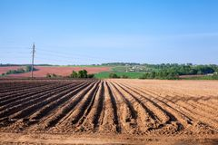 Arable land in the lowlands. Agricultural work. Arable land in the lowlands. Agricultural work at spring Stock Photos