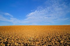 Arable land at morning Royalty Free Stock Photo