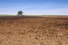 Arable land over blue sky. With farmers house Stock Photo