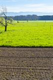 Arable land and pastures. Agriculture in Switzerland, arable land and pastures Stock Photography