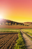 Arable land and pastures in Switzerland. Swiss village surrounded by forests and plowed fields at sunset. Agriculture in Switzerland, arable land and pastures Royalty Free Stock Photo
