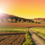 Arable land and pastures in Switzerland. Swiss village surrounded by forests and plowed fields at sunset. Agriculture in Switzerland, arable land and pastures Royalty Free Stock Photography