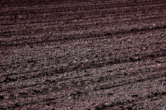 Arable land ready for planting. Selective focus on the middle of an image Stock Images