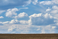 Arable land and sky background Stock Photography