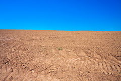 Arable  land in the spring for crops. The arable  land in the spring for crops Stock Images