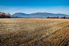 Arable land. Before the start of spring royalty free stock images