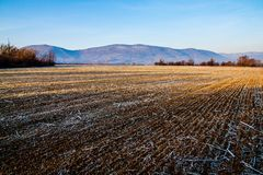 Arable land. Before the start of spring stock image