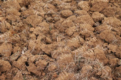 Arable land surface Stock Photos
