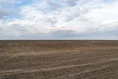 Arable land to the horizon Royalty Free Stock Image