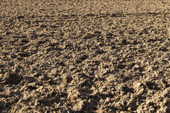 Arable land. In winter time Stock Photography