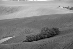 Arable lands in spring. Hunting box in Moravia hills. Royalty Free Stock Images
