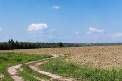 Arable landscape. With country road in Russia Stock Photography