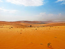 Arabska pustynia Obrazy Stock