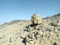 Arabska pustynia, Afryka Obraz Stock