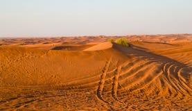 Arabska pustynia, Dubaj Obrazy Stock