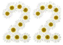 Arabski liczebnik 22, dwadzieścia dwa, od białych kwiatów chamomile, Obraz Stock