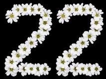 Arabski liczebnik 22, dwadzieścia dwa, dwadzieścia, dwa, od białych kwiatów o Obrazy Stock