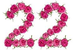 Arabski liczebnik 22, dwadzieścia dwa, od czerwonych kwiatów wzrastał, odizolowywa, Zdjęcia Royalty Free