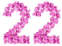 Arabski liczebnik 22, dwadzieścia dwa, od kwiatów altówka, odizolowywał o Fotografia Stock