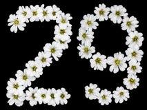 Arabski liczebnik 29, dwadzieścia dziewięć, dwadzieścia, dwa, dziewięć, od białego fl Obraz Stock