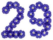 Arabski liczebnik 29, dwadzieścia dziewięć, od błękitnych kwiatów len, isola Obraz Stock