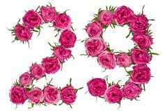 Arabski liczebnik 29, dwadzieścia dziewięć, od czerwonych kwiatów wzrastał, isolat Zdjęcia Royalty Free