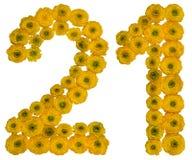 Arabski liczebnik 21, dwadzieścia jeden, od żółtych kwiatów jaskier, Obrazy Royalty Free