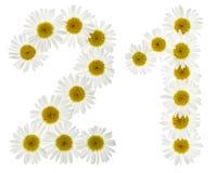 Arabski liczebnik 21, dwadzieścia jeden, od białych kwiatów chamomile, Fotografia Royalty Free