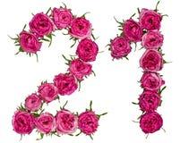 Arabski liczebnik 21, dwadzieścia jeden, od czerwonych kwiatów wzrastał, odizolowywa, Zdjęcia Royalty Free