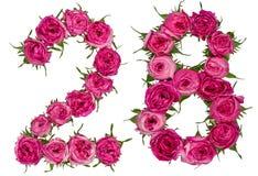 Arabski liczebnik 28, dwadzieścia osiem, od czerwonych kwiatów wzrastał, isola Zdjęcia Stock