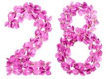 Arabski liczebnik 28, dwadzieścia osiem, od kwiatów altówka, odizolowywających Zdjęcia Royalty Free