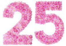 Arabski liczebnik 25, dwadzieścia pięć, od różowych niezapominajkowych kwiatów, Obraz Royalty Free