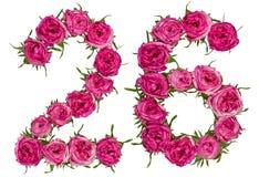 Arabski liczebnik 26, dwadzieścia sześć, od czerwonych kwiatów wzrastał, odizolowywa, Fotografia Stock